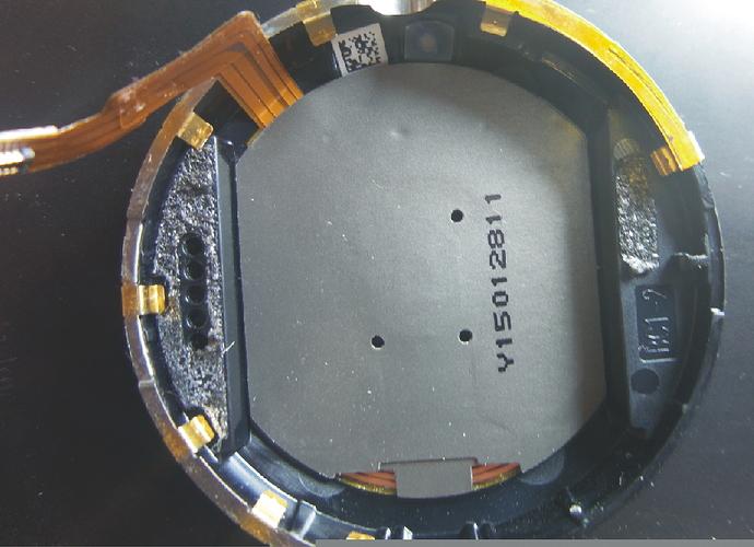 中壳及充电线圈.jpg